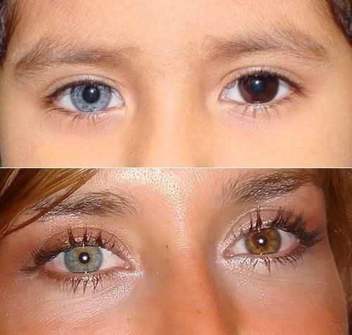 6cca6b196e Lentes Blandas Estéticas: Lentes de Contacto que cambian el color del ojo.